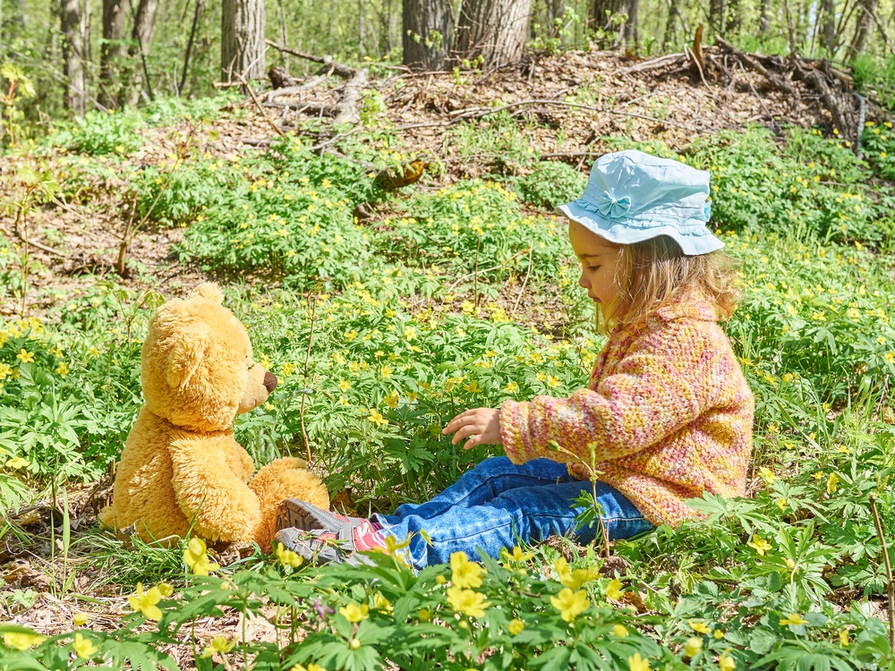 child-forest-toy-teddy-bear-compressed